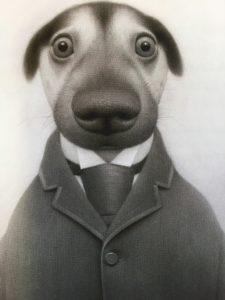 ce chien est très bien habillé